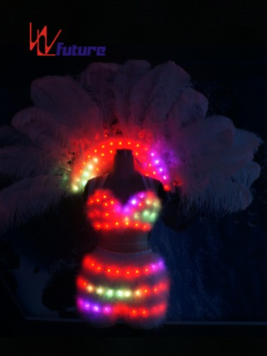 Custom Sexy LED Light Bra & Pants & Ostrich Feathers For Dance Show WL-0187
